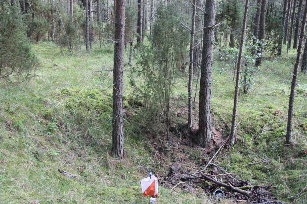 1100 Narva last tutvusid kahel päeval orienteerumisega